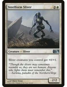 Steelform-Sliver-m14