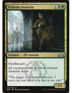 Ochran-Assassin-grn